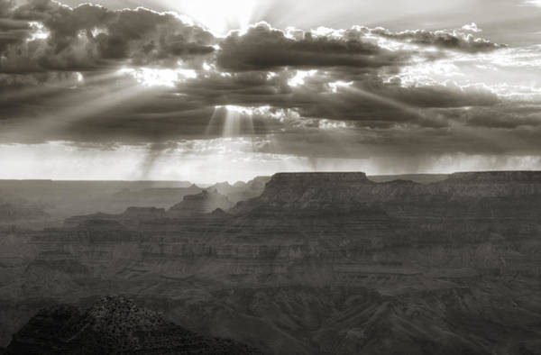 Wall Art - Photograph - From Heaven by Ricky Barnard
