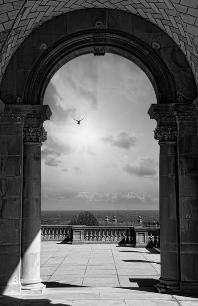 Photograph - From Here To Eternity by Robin-Lee Vieira