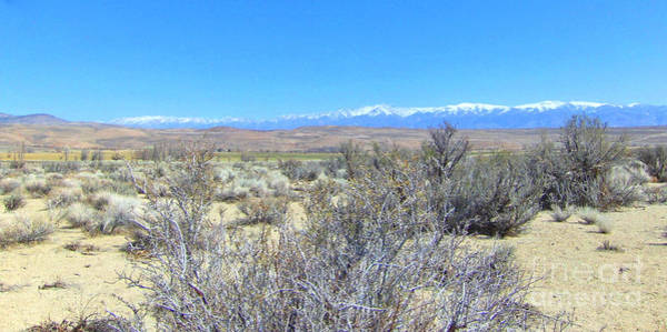 Bishop Hill Photograph - From The Desert by Marilyn Diaz