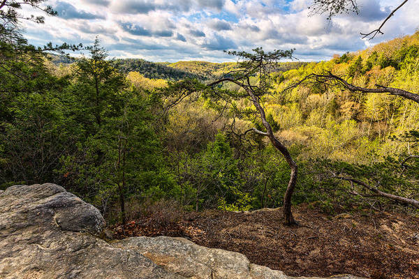 Photograph - From The Top Of Conkles Hollow by Dale Kincaid