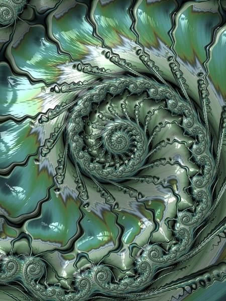 Digital Art - Fronds by Amanda Moore