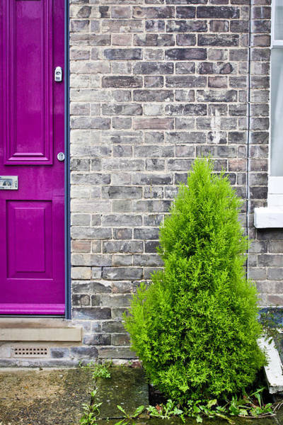 Door Wall Art - Photograph - Front Of House by Tom Gowanlock