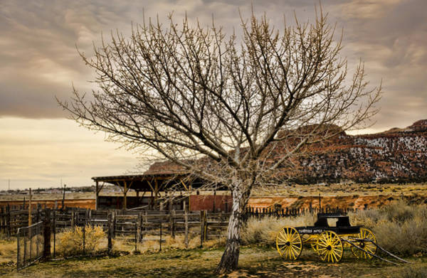 Photograph - Frontier by Heather Applegate