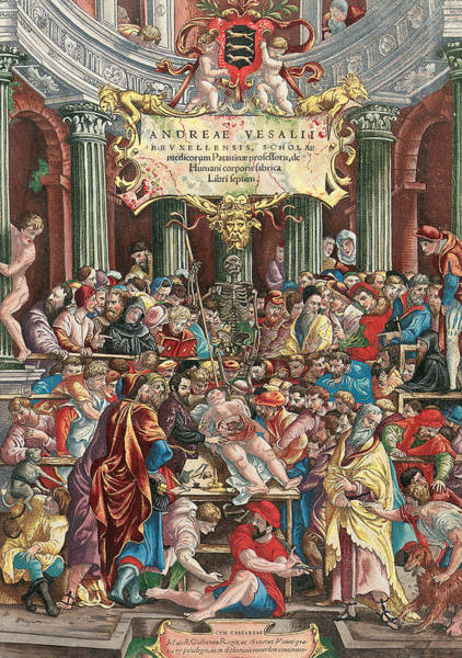Imperial Painting - Frontispiece To De Humani Corporis Fabrica Libri Septem by Venetian School