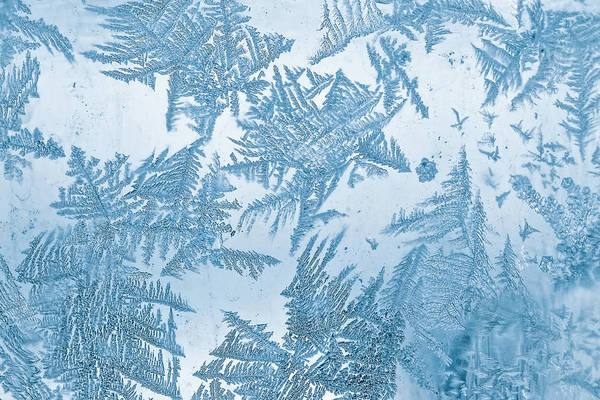Frosted Glass Photograph - Frost Blue Pattern On Window by Oxygen
