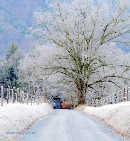 Rader Photograph - Frost Laden Road by Roe Rader