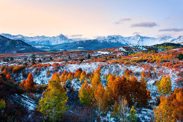 Photograph - Frosty Autumnal Morning by Rick Wicker
