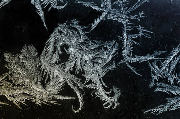 Ice Crystals Photograph - Frosty Fillegree by Susan Capuano
