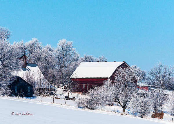 Photograph - Frosty Morning by Edward Peterson