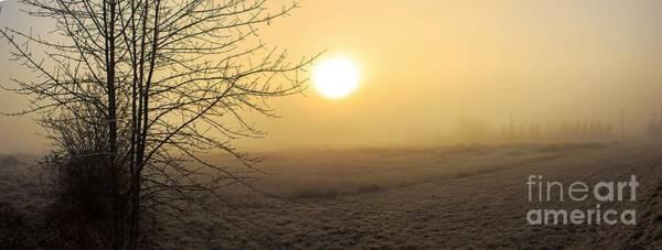 Photograph - Frosty Sunrise by Michael Cross