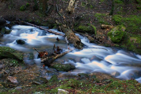 Photograph - Frothy Creek @ Liberty Lake 6 by Ben Upham III