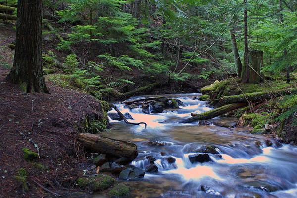 Photograph - Frothy Creek @ Liberty Lake 7 by Ben Upham III
