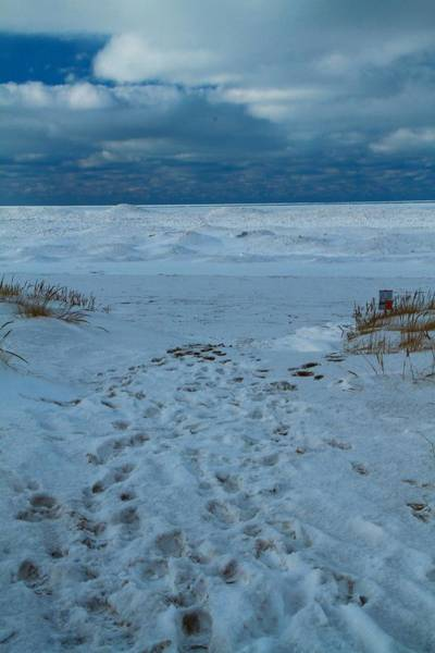 Wall Art - Photograph - Frozen Beach On Lake Michigan by Dan Sproul