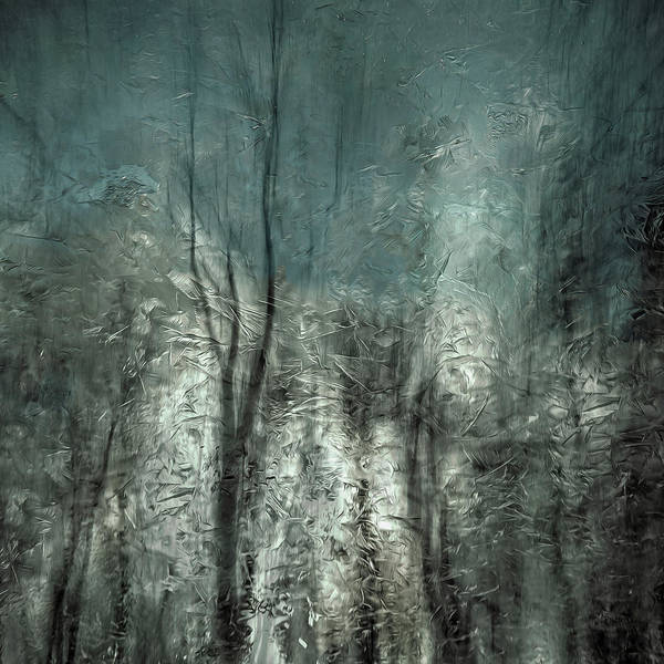 Frozen Frost Wood Art Print