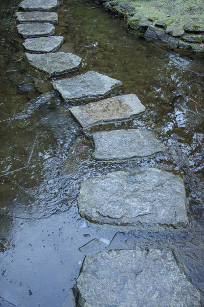 Photograph - Slippery Stone Path by Roxy Hurtubise