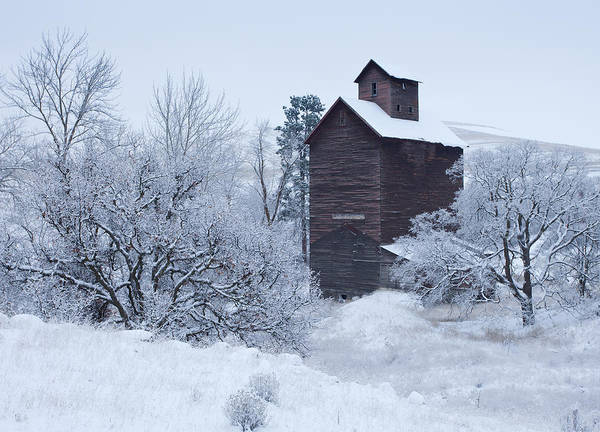 Ghost Town Photograph - Frozen In Time by Darren  White