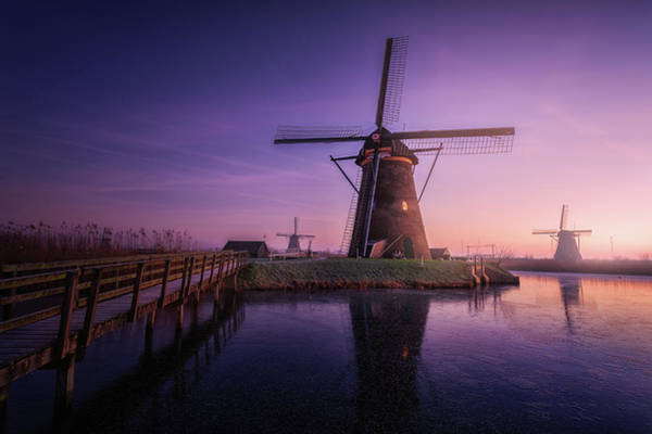 Mills Photograph - Frozen Kinderdijk by Clara Gamito