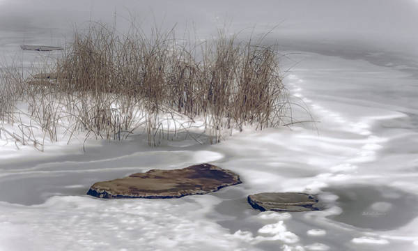 Photograph - Frozen Landscape by Julie Palencia