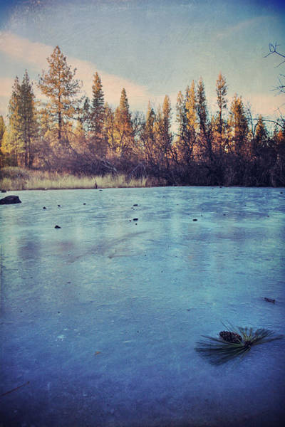 Northern California Wall Art - Photograph - Frozen by Laurie Search