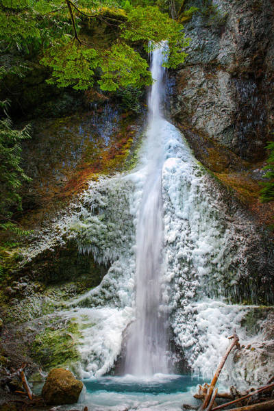 Nps Wall Art - Photograph - Frozen Marymere Falls by Inge Johnsson