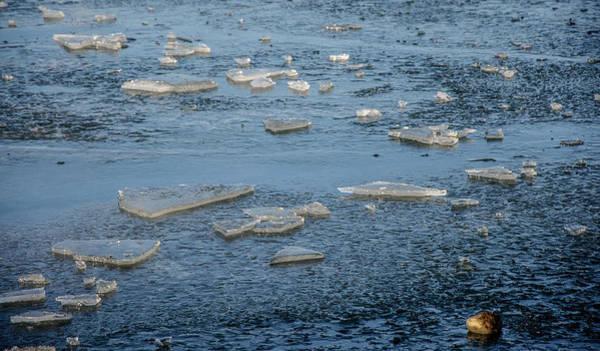 Photograph - Frozen Ocean  by Roxy Hurtubise