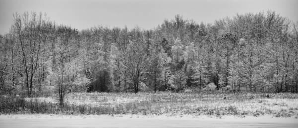 Photograph - Frozen by Sebastian Musial