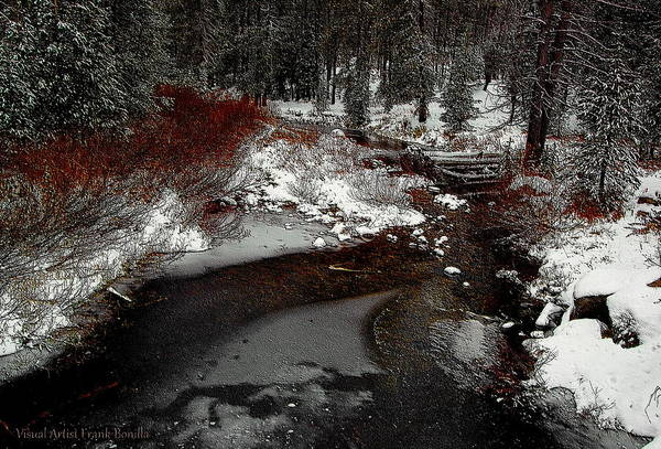 Digital Art - Frozen Stream II by Visual Artist Frank Bonilla