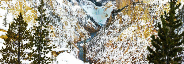 Yellowstone Canyon Photograph - Frozen Waterfall Seen From Artist Point by Tom Norring