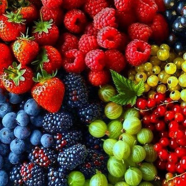 Wall Art - Photograph - Fruit And Berries by Marina Boitmane