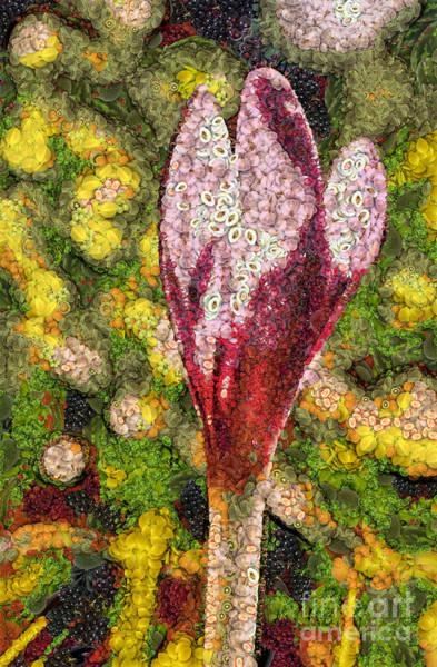 Digital Art - Fruit And Vegetable Flower by Odon Czintos