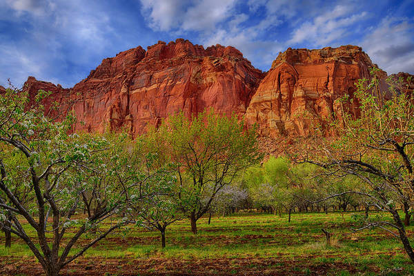 Photograph - Fruita In Capitol Reef by Greg Norrell