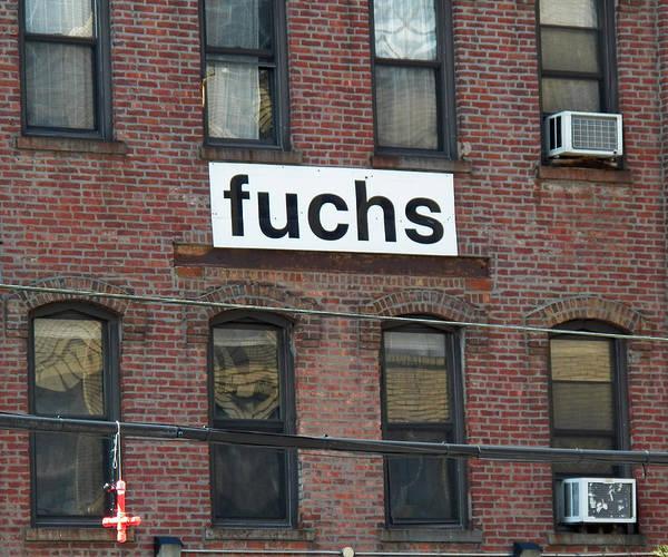 Photograph - Fuchs by Steven Huszar