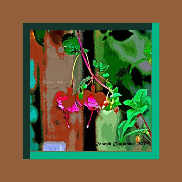 Digital Art - Fuchsia by Joseph Coulombe