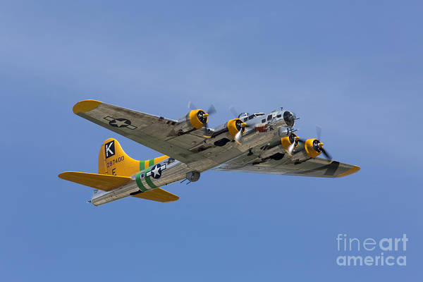 B-17 Bomber Photograph - Fuddy Duddy by John Daly