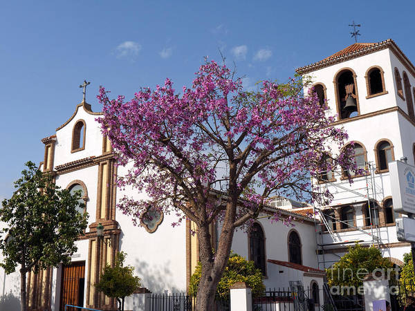 Photograph - Fuengirola Church By Market  by Brenda Kean