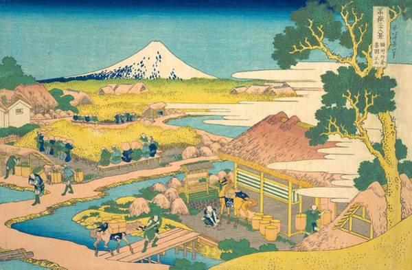 Thirty-six Views Of Mount Fuji Wall Art - Painting - Fuji From The Katakura Tea Fields In Suruga by Katsushika Hokusai