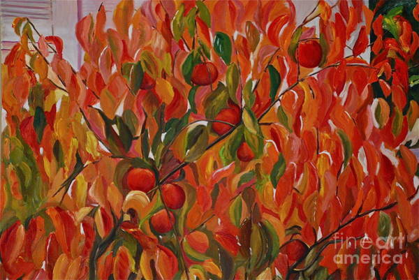 Persimmon Painting - Fuyu Persimmon Tree by Amy Fearn