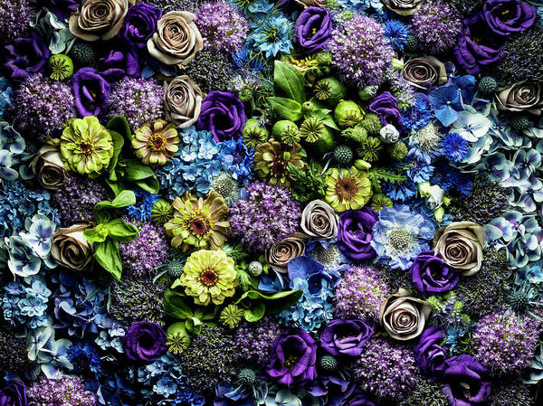 Photograph - Full Frame Flowers Arrangement by Jonathan Knowles