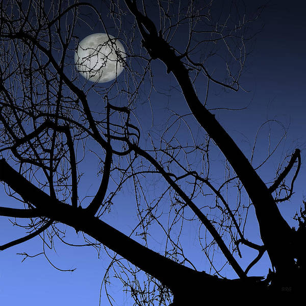 Photograph - Full Moon And Black Winter Tree by Ben and Raisa Gertsberg