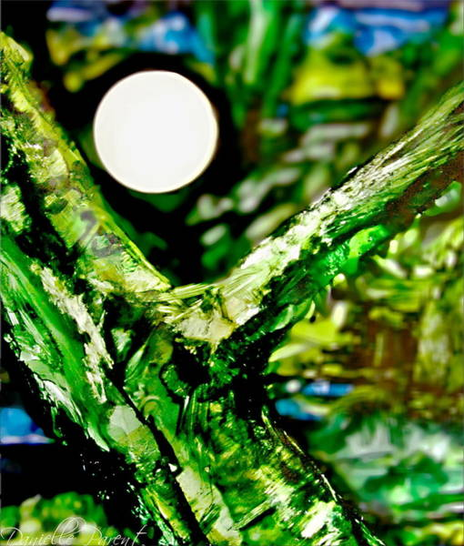 Photograph - Full Moon Behind The Tree Alcohol Inks by Danielle  Parent