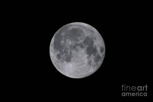 Perigee Moon Photograph - Full Moon by John Chumack