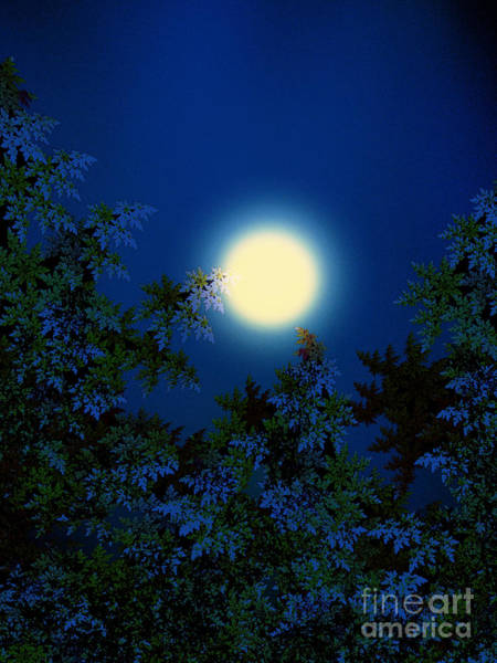 Fractal Landscape Digital Art - Full Moon by Klara Acel
