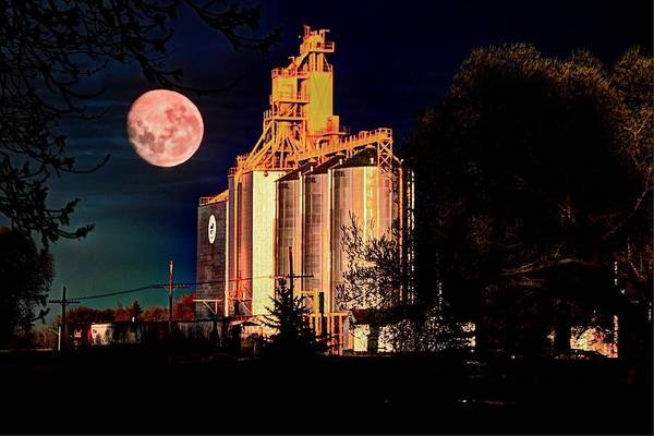 Photograph - Full Moon Over Elevator by David Matthews