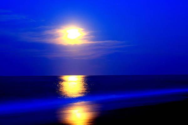 Bob Fisher Photograph - Full Moon Over Kitty Hawk by Bob Fisher