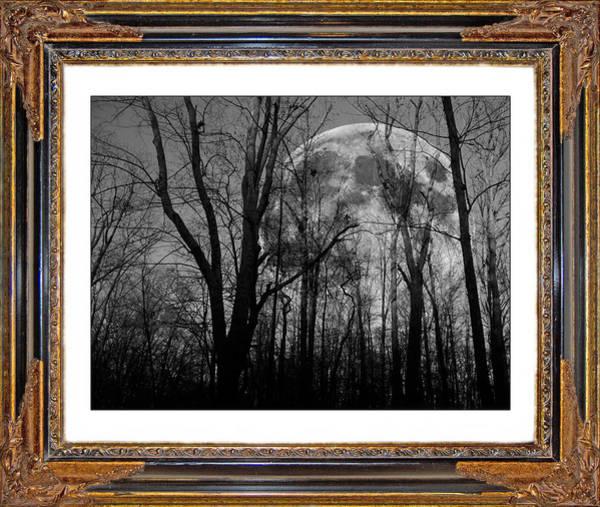 Apparition Digital Art - Full Of Possibilities  by Betsy Knapp