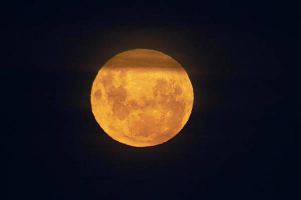 Perigee Moon Photograph - Full 'supermoon' Seen At  Lunar Perigee by David Wall