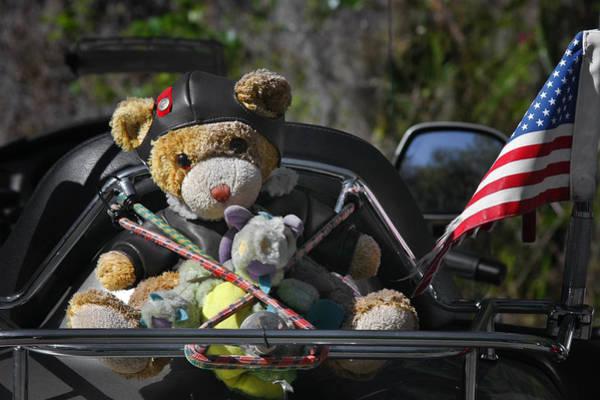 Photograph - Full Throttle Teddy Bear by Christine Till