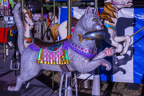 County Fair Wall Art - Photograph - Fun Cat  Amusementt Ride by Garry Gay
