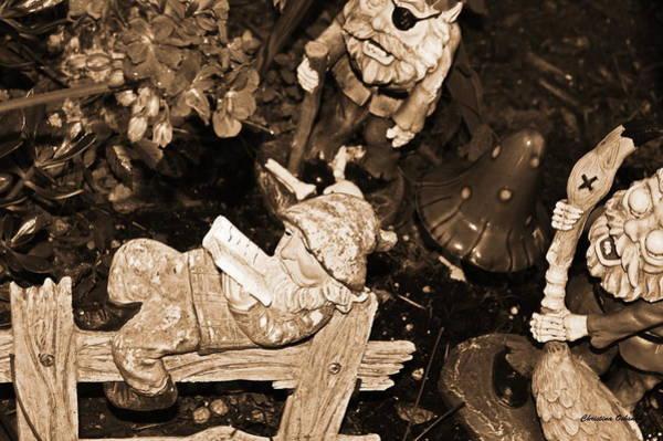 Shrooms Photograph - Fun In The Garden by Christina Ochsner
