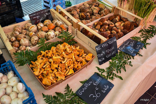 Photograph - Fungi At The Market by Allen Sheffield
